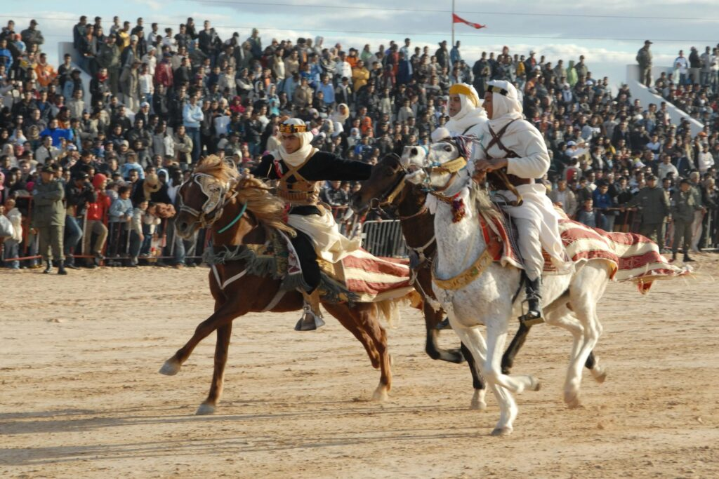 competition-sports-rodeo-tunisia-western-riding-horse-racing